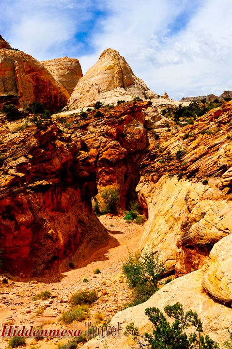 Hiking Trail in the Red Rocks