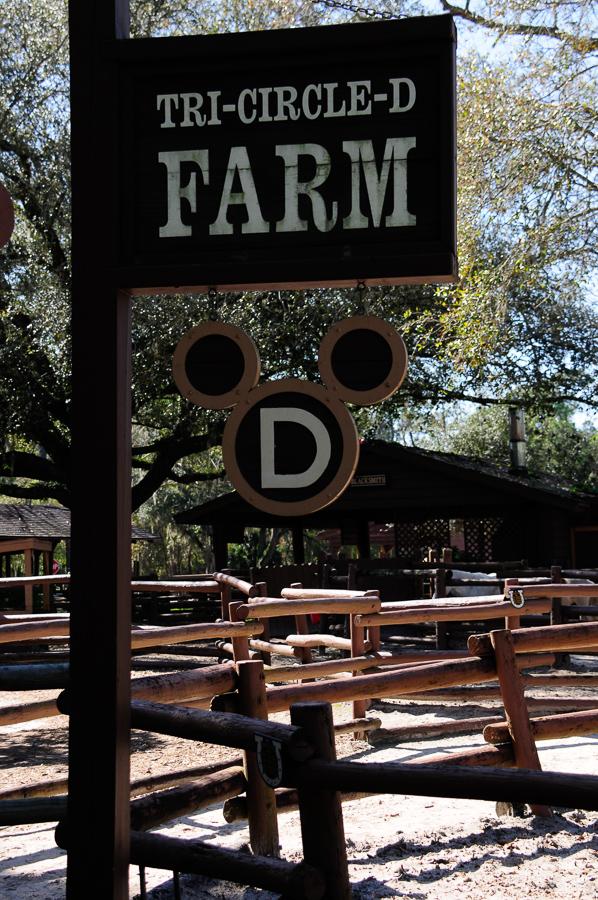 Tri-Circle D Farm