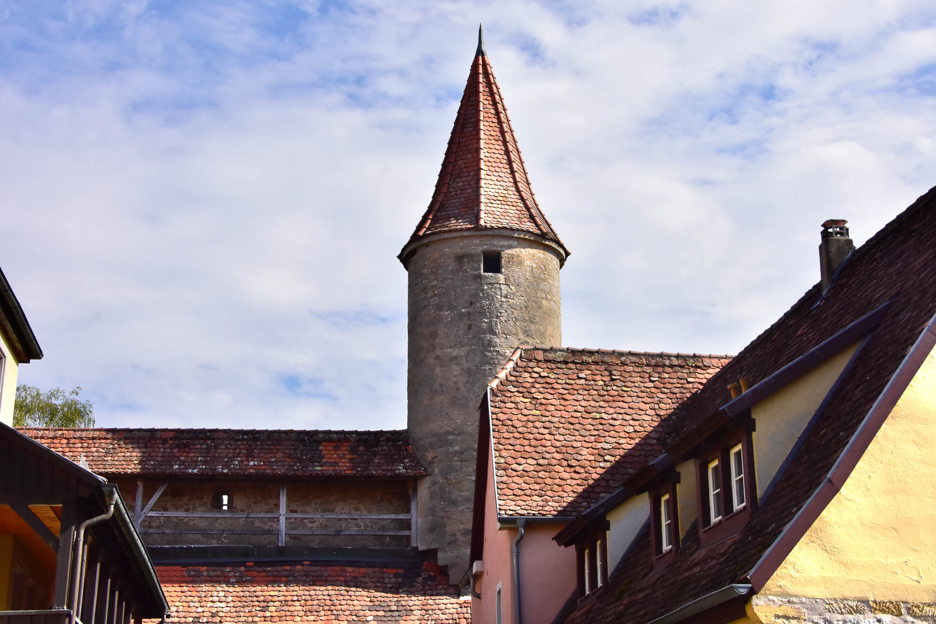 Tower and Medieval Wall