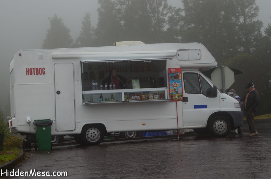 Vender in the Fog