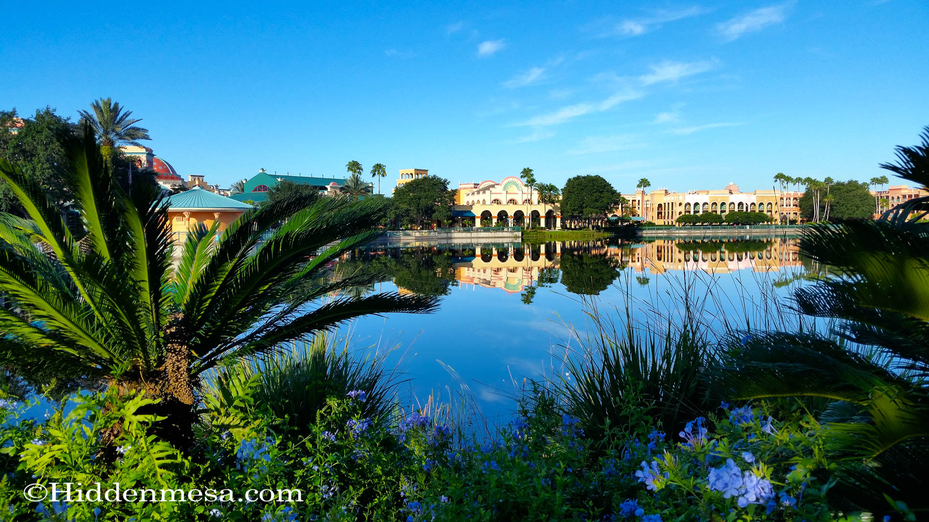 Palms and Lagoon