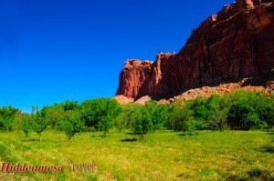Fruita District, Capital Reef National Park