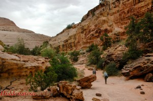 Capital Gorge Trail, Capital Reef National Park, Utah