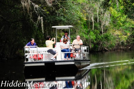 Visitors to Homosassa State park travel from the main visitor center to the zoo on electric powered boats. Image by Bonnie Fink