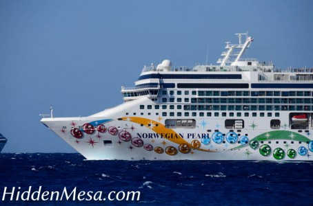 The Norwegian Pearl showing off the colorful paint scheme of NCL.