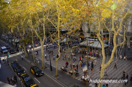 The center of Las Rambles Street in Barcelona is set aside for pedestrians and street venders.