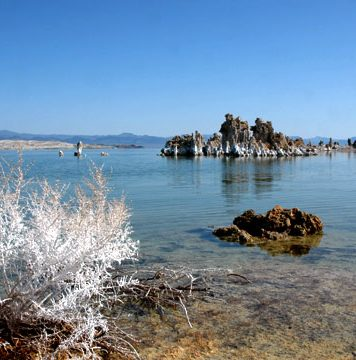 Image of Mono Lake