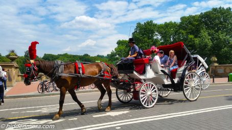 Horse drawn carriage in Central Park, New York City