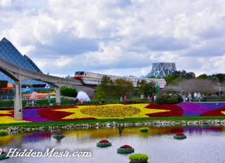 Epcot and Monorial