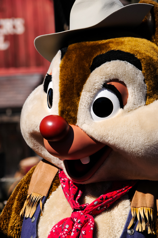 Chip, or Dale?